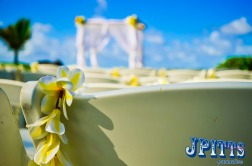 wedding_jpittsproductions-91